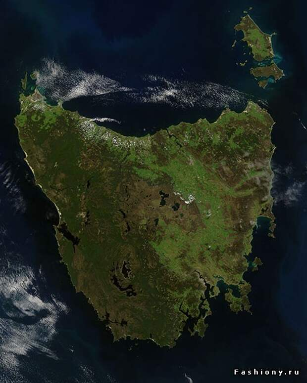 гугл наглядно демонстрирует количество зелени на острове