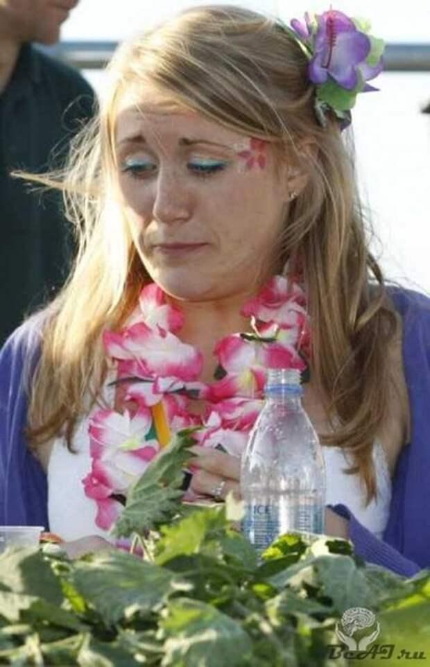 Чемпионат по поеданию крапивы