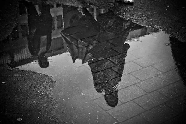 Дождь, Лужа, Воды, Зеркальное Отображение, Мокрый