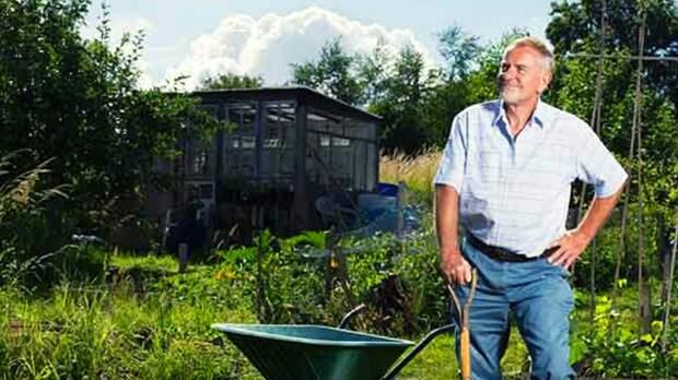 Рассказываю как улучшить здоровье просто занимаясь садоводством