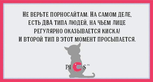 catowner10