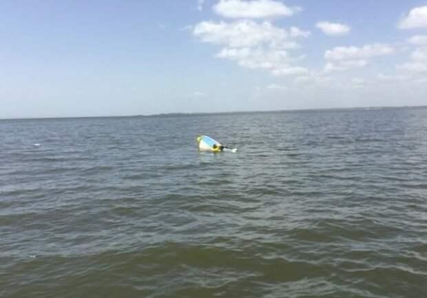 Барахтаясь в воде, мужчина был уверен, что погибнет, но умная собака придумала, как помочь хозяину