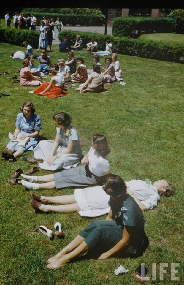 Жизнь американских старшеклассников 50-х годов