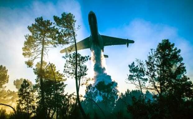 На фото: самолет МЧС РФ Бе-200ЧС во время тушения лесных пожаров.