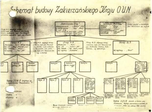 Составленная сотрудниками польской спецслужбы схема ОУН в Польше
