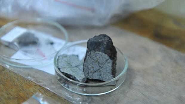 «Я думала, что меня атаковал марсианин»: Случаи попадания метеоритов в людей
