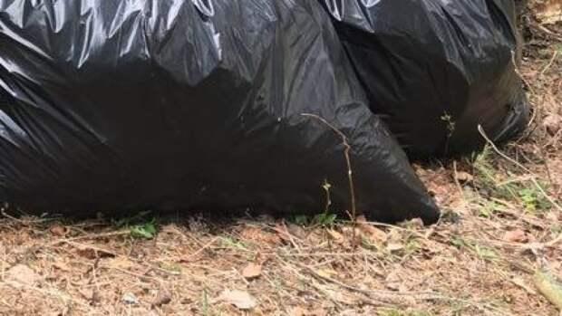 Житель Кемеровской области нашел в пакетах расчлененное тело 28-летней девушки