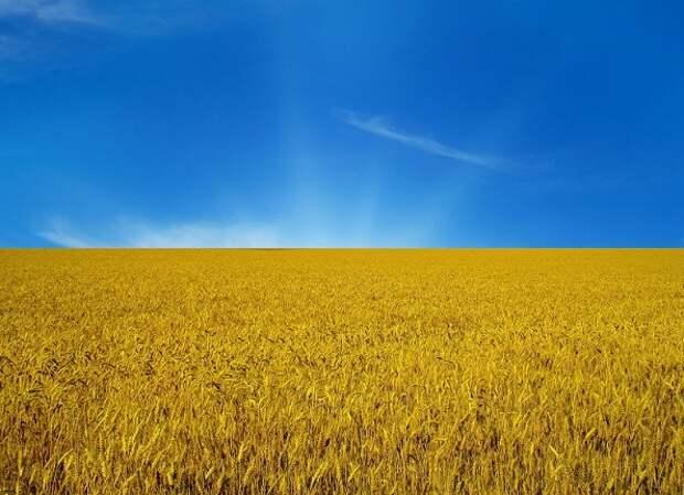 Что на самом деле означают цвета украинского флага