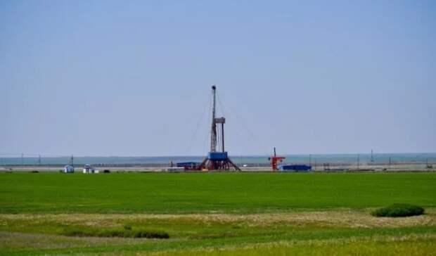 Экологический рейтинг категории «В» присвоен «Газпром нефти»