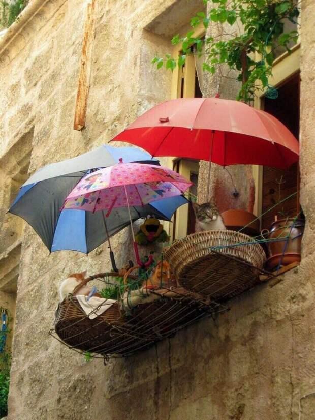 Балкон  для котиков