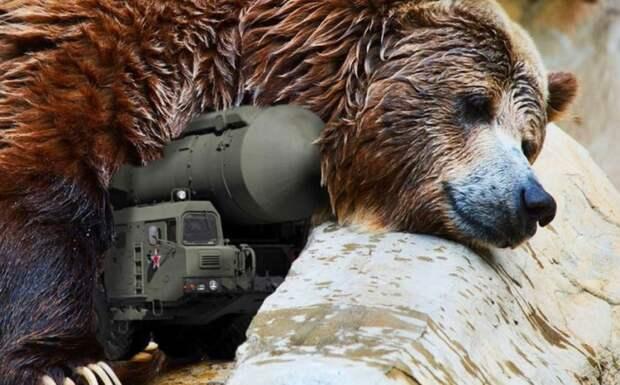 ЕС не хочет будить русского медведя