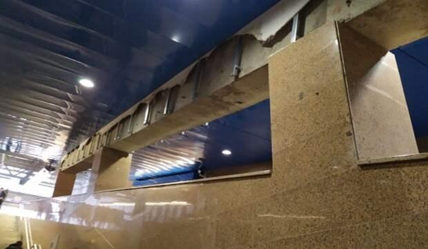 Петербургским тараканам не хватает лишь сюртука, или Как подземка превратилась в гнездо прусаков