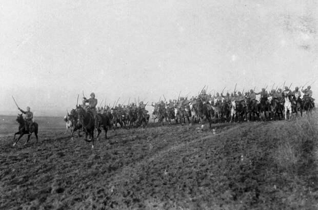 Animals in World War I (12).jpg
