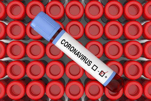 В России за сутки выявили 18024 заражённых COVID-19