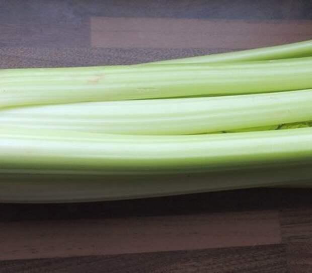 Как вырастить листовой сельдерей на подоконнике