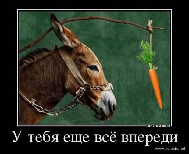 Принцип морковки в действии