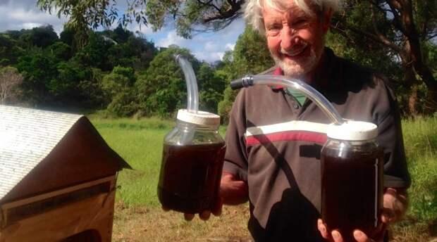 Гениально — улей, который сам собирает мед