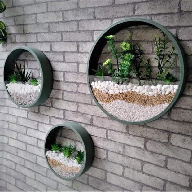 Декор стены живыми растениями