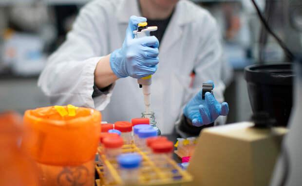 Десятки неизвестных науке вирусов нашли во льдах Тибета