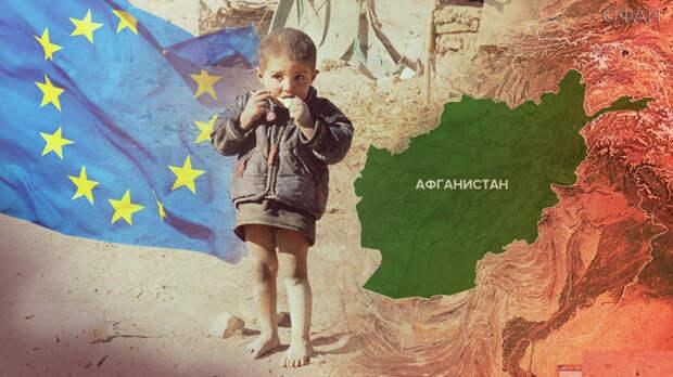Афганская катастрофа вскрыла тотальный кризис управления в США и НАТО