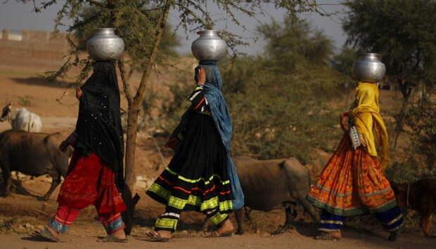 Женщины преодолевают путь в несколько километров по пустыне с алюминиевыми чанами на голове