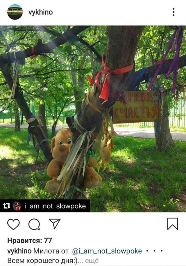 Фото дня: как стать счастливым в Выхине-Жулебине