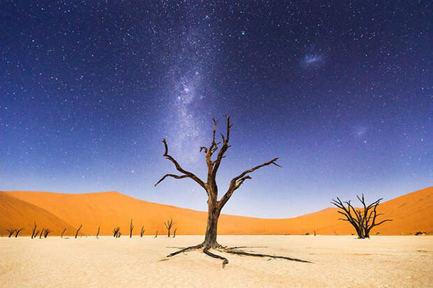 Журнал National Geographic назвал победителей ежегодного фотоконкурса для путешественников