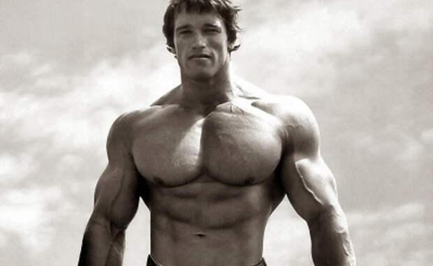 Лучшие упражнения для мощной груди