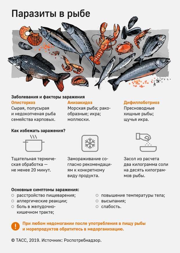 Почти 20 тыс. россиян заразились паразитами от рыбы в 2018 году