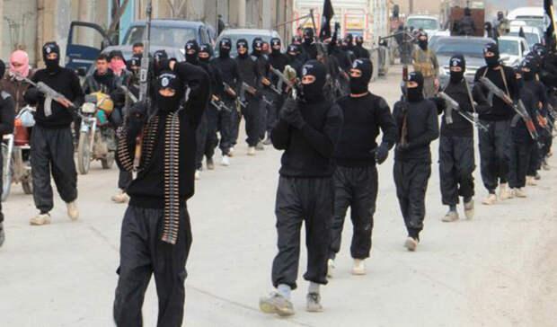 Чем воюет ИГИЛ: стандартная экипировка рядового бойца