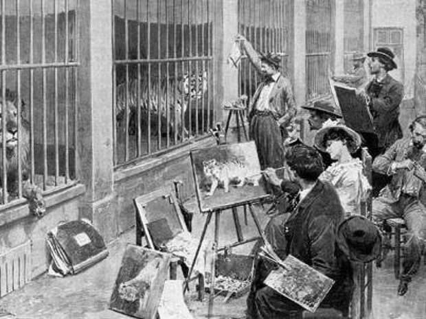 2. Сад растений и первый публичный зоопарк животные, зоопарк