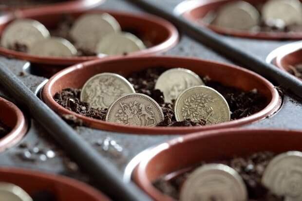 Планирование посевов экономит ваши деньги