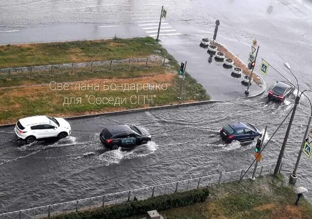 На юго-западе Петербурга дерево пало жертвой грозы и придавило автомобили
