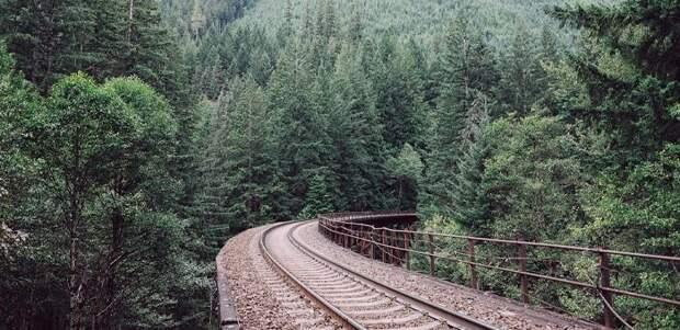 Проект железной дороги в Китай через Горный Алтай вновь на повестке дня РЖД
