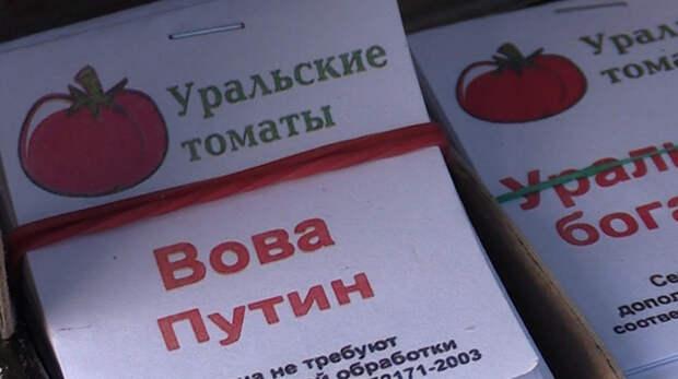 В России и за рубежом растёт спрос на томаты, названные в честь Путина