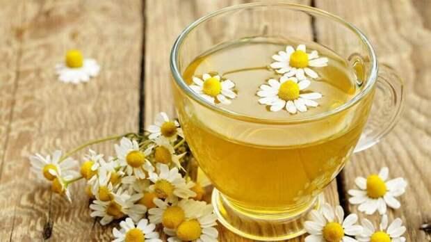 Ромашка хороша при любых болезнях, включая простуду на губах. /Фото: steptohealth.com