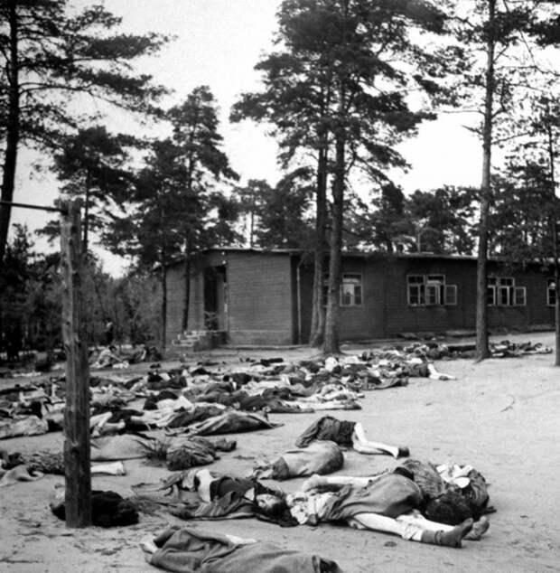 Все ужасы концлагеря Берген-Бельзен в редких архивных фотографиях