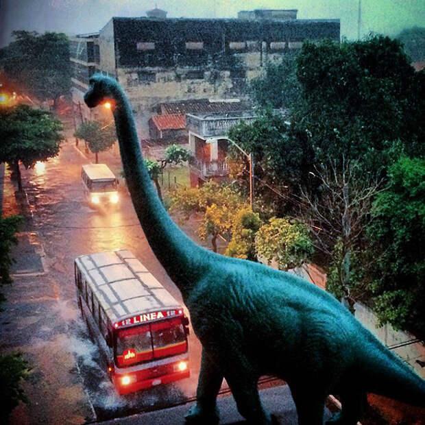 travel-photography-dinosaur-toys-dinodinaseries-jorge-sa_011