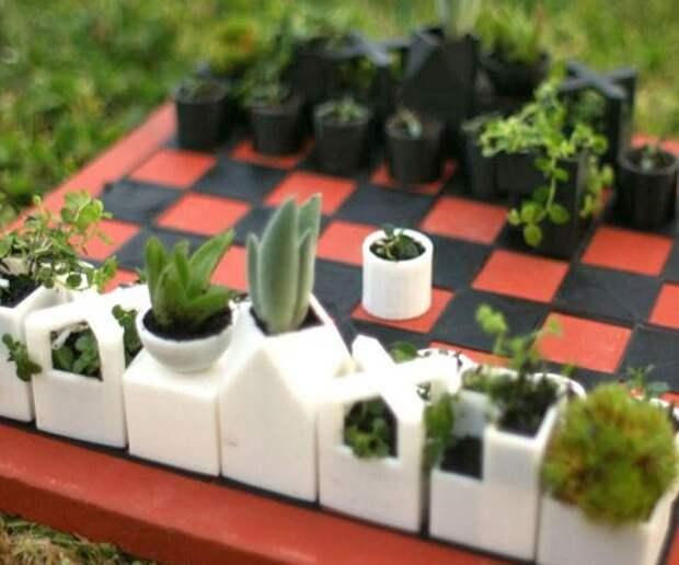 Шахматы для цветоводов
