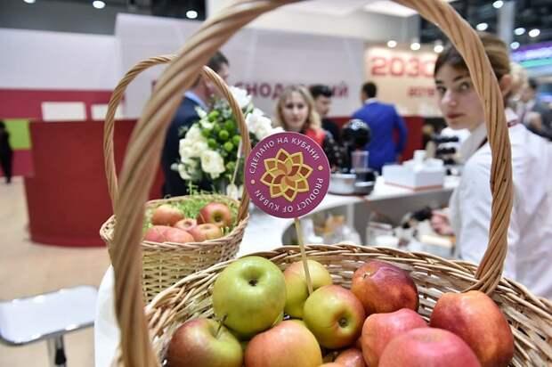Более 300 товаров получат знак «Сделано на Кубани»