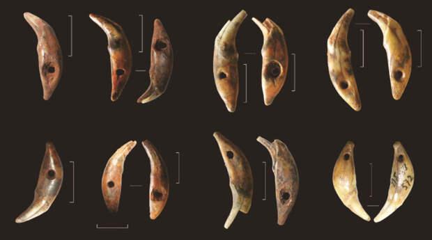 Подвески из клыков песца, найденные на стоянке Сунгирь.