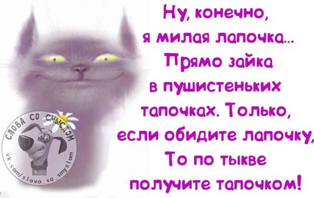 1398712530_frazochki-2 (604x381, 193Kb)