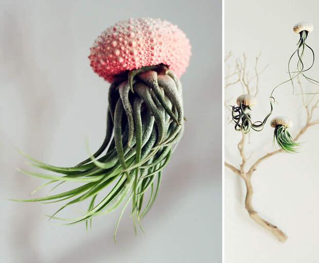 15 самых оригинальных горшков и кашпо для комнатных растений