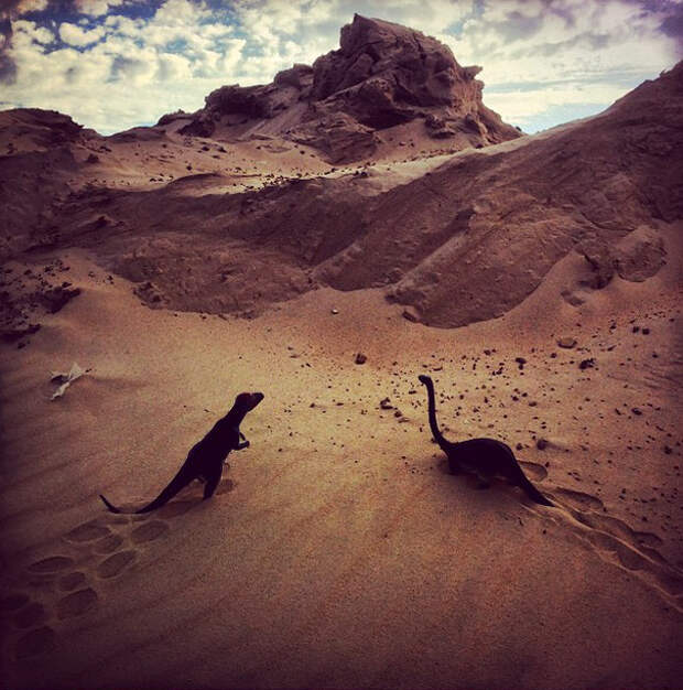 travel-photography-dinosaur-toys-dinodinaseries-jorge-sa_014