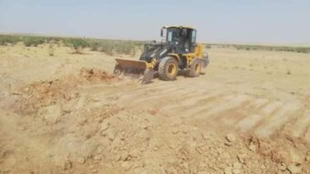 В Туркестанской области закапывают траншеи, в которых гибли животные
