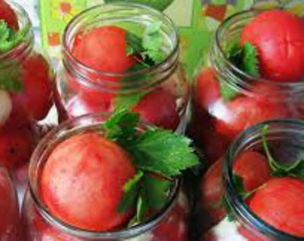 Солёные помидоры на зиму в банках — рецепты