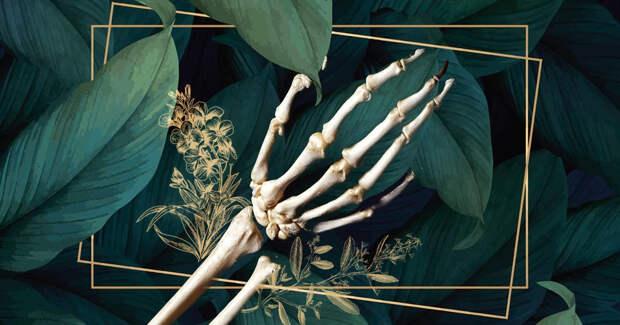 5 необычных способов похоронить себя экологично