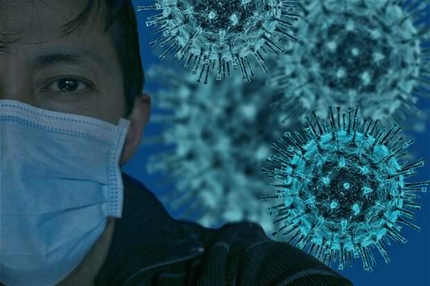 Десять жителей Севастополя оказались больны коронавирусом