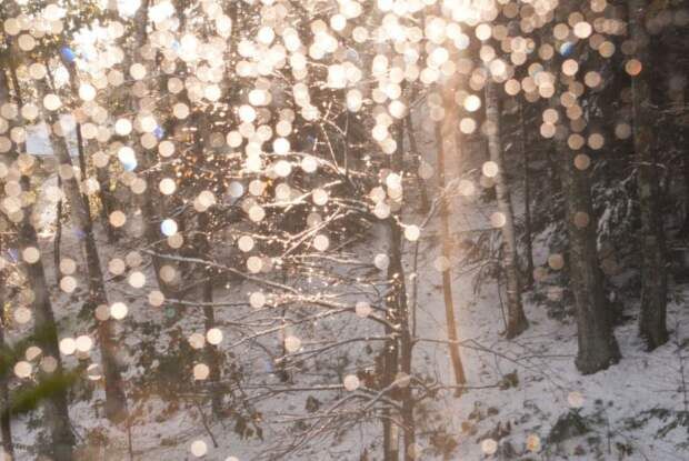 tumblr_static_beautiful-fairy-lights-winter-favim.com-275869-2665