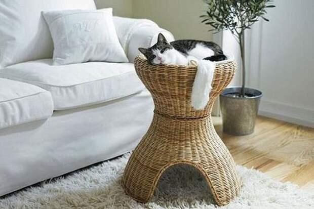 cathouse09 Дизайн для котов